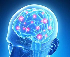 Que se passe-t-il  dans le cerveau lors d'une séance d'EFT ?
